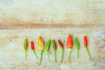 Red green and brown Chili on wood background