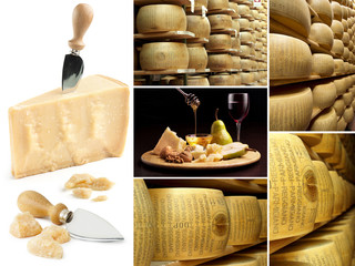 collection of parmesan