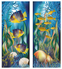 Underwater banners with shell and tropical fish, vector