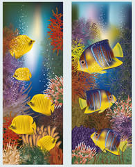 Underwater banners with yellow tropical fish, vector