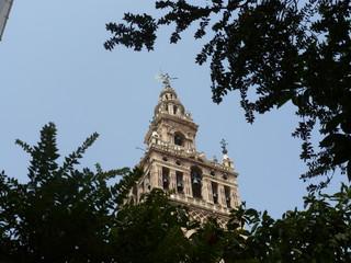 Catedral de Sevilla entre naranjos.
