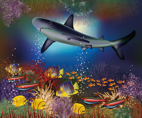 Underwater wallpaper with shark and tropical fish, vector