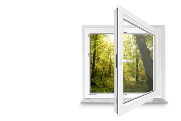 Fenster 27