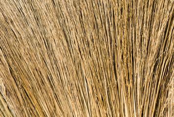 Closeup Hair Brown Broom