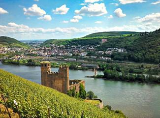 Blick auf Burg Maus im Rheingau