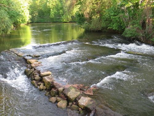 Foto op Aluminium Bos rivier Reißende Regnitz