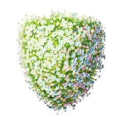 Shield Of Flowers