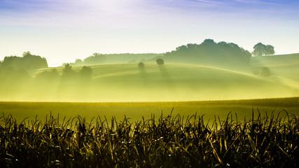 Green hills. Nature landscape background .