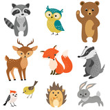 Cute forest animals - 83100935