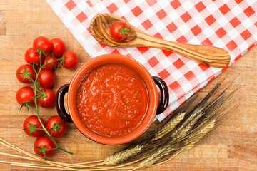 tomato sauce with ingredients over country background