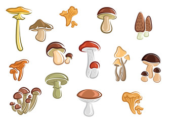 Collection of cartoon mushrooms and fungus