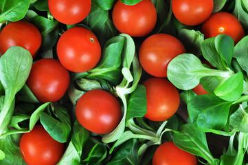 Cherry tomatoes with ferdsalat