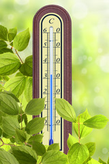 Thermometer 37