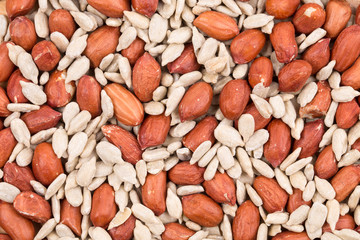 Close up of peanuts and sunflower seeds.