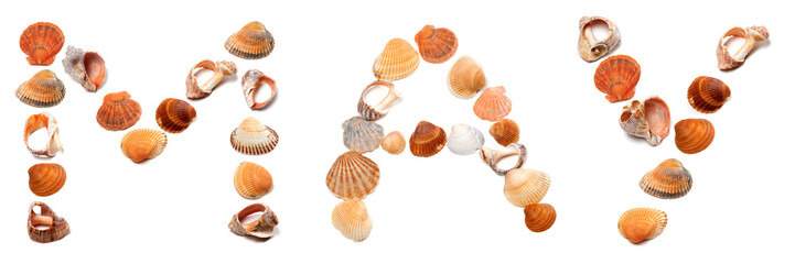M A Y text composed of seashells
