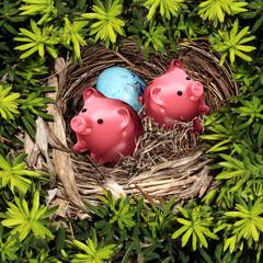Savings Nest