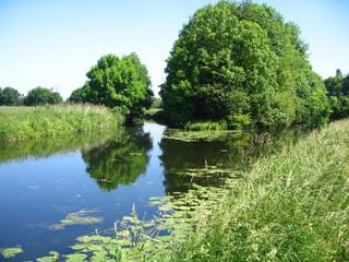 Flussgabelung im  Münsterland - Stever