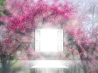 光が射し込む窓