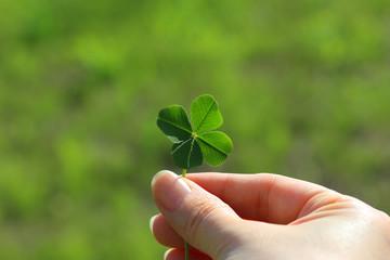 四つ葉のクローバーを持つ - Holding a four leaf clover