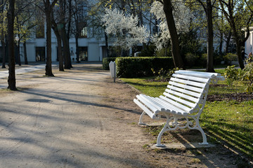 weiße Holzbank in einem Park im Frühling