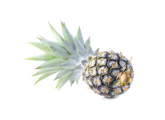 Green pineapple on isolated white background, unripe pineapple o