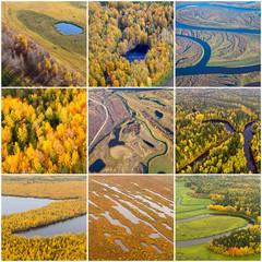 Autumn natural textures, top view