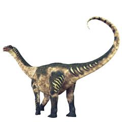 Antarctosaurus Dinosaur Tail