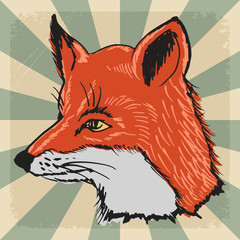 vintage background with fox
