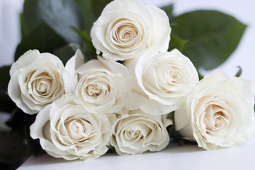 seven white roses