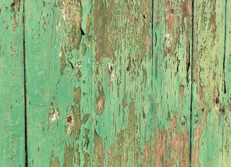 Closeup texture green wood wall