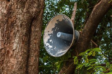 megaphone on tree