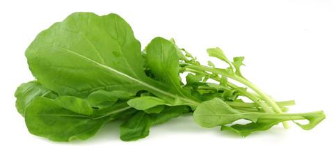 rocket leaf