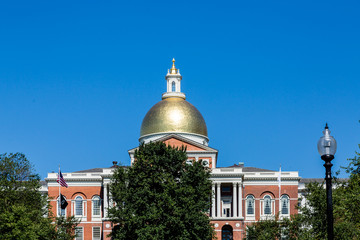 Gold Dome Beyond Green Tree
