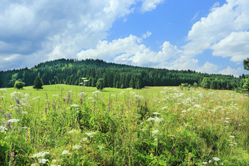 Beautiful Landscape from summer Mountains in southern Bohemia