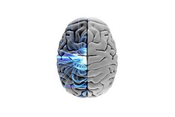 Composite image of brain