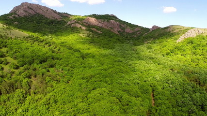 Aerial view mountain valley covered with forest