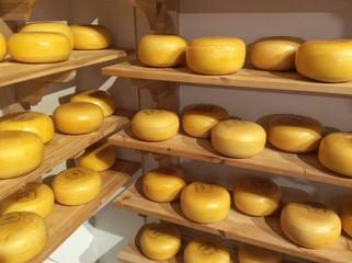 Gouda Cheese, Netherland
