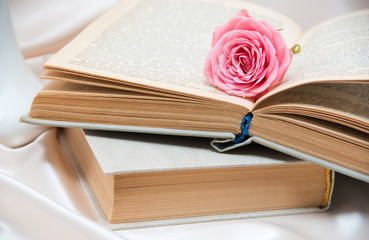 Roses and old book.
