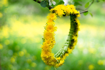 dandelion chain