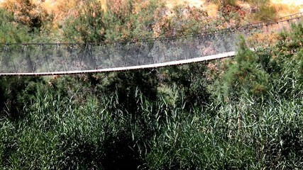 Suspension bridge and  Besor Brook  in Eshkol National Park