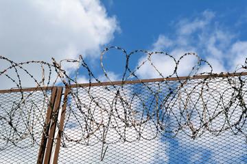 Колючая проволока на заборе тюрьмы, промышленного объекта