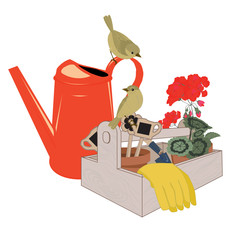 garden tools, watering can and potted geraniums