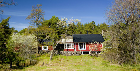 Cottage hidden in nature (Sweden)