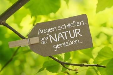 Augen schließen... und die Natur genießen...
