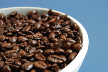 Arabica Coffee Beans in a White Bowl Against Blue Background