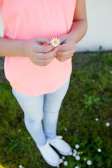 Hands holding a beautiful daisy