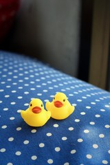 Yellow rubber duck on a blue background.