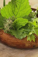herbes aromatiques 13052015