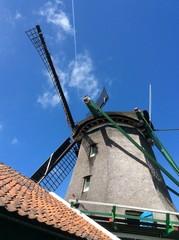 Wind Mill, Holland