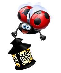 coccinella lanterna
